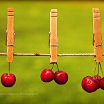 Berry Cherry Cherries Fine Art Photography Bowling Green KY Cheree Federico Photography