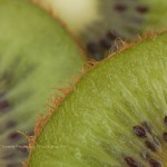 Green with Envy Fruit Macro Fine Art Photography Bowling Green KY Cheree Federico Photography