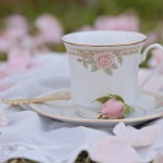 It's My Cup of Tea Vintage Teacup Fine Art Photography Bowling Green KY Cheree Federico Photography